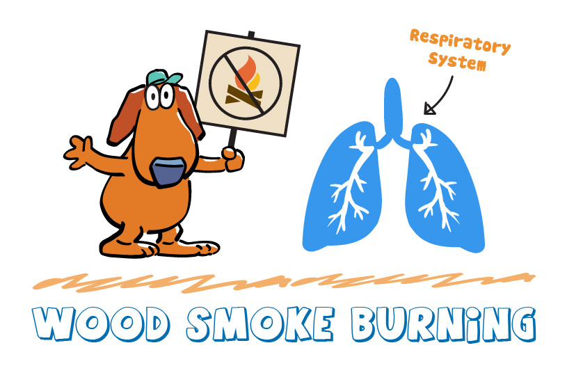 Wood Smoke Burning Respiratory